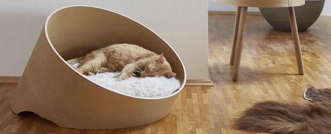 Les 11 meilleurs paniers pour chat (+ hamacs de radiateur)