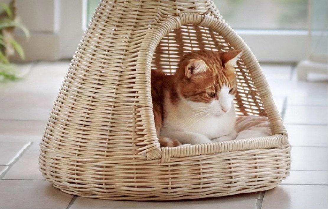 Les 12 meilleurs paniers pour chat (+ hamacs de radiateur)