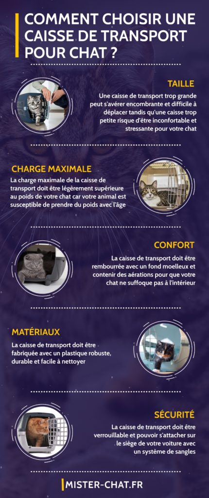 comment choisir une caisse de transport pour chat - infographie