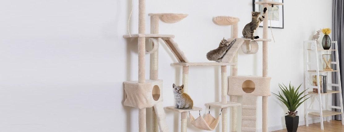 Les 20 meilleurs arbres à chat (petite taille, grande taille et muraux)